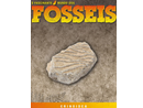 O Fascinante Mundo dos Fósseis - nº 18 Crinoidea